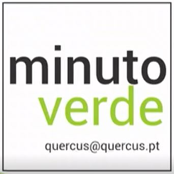 RTP - Minuto Verde Quercus